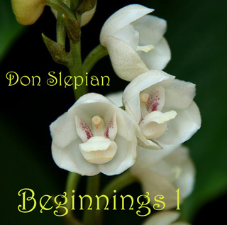 Beginnings 1 (CD) - Don Slepian